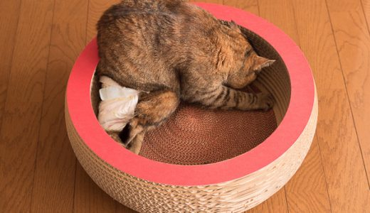 段ボール職人の猫用キャットベット・キュートボールのレビュー