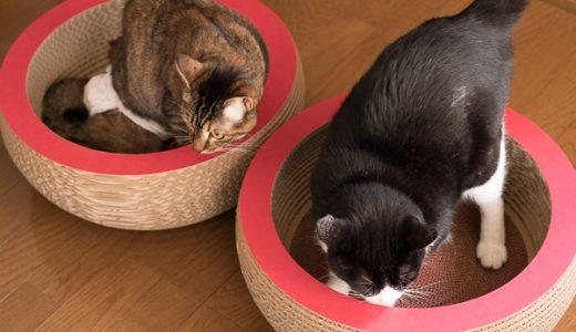 ミュッターのペット用オーガニックコットン製ドーナツベッドが今だけ30%引き!